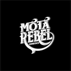 Mota Rebel