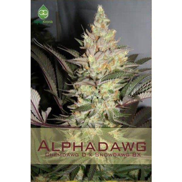 Alphakronik Alphakronik Alphadawg Reg 10pk