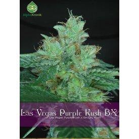 Alphakronik Alphakronik Las Vegas Purple Kush BX Reg 10 pk
