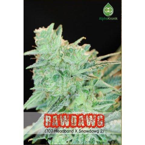 Alphakronik Rawdawg Reg 5pack