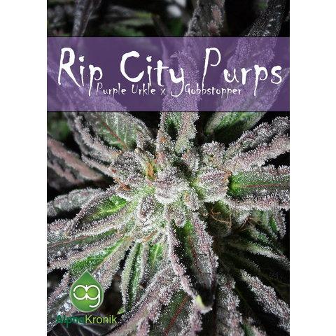 Ripcity Purps Reg 10 pk