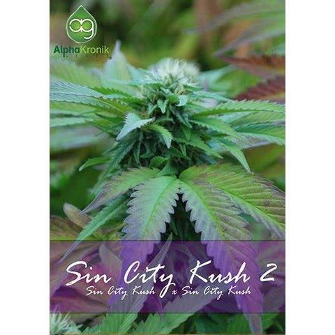 Sin City Kush 2 Reg 5 pk
