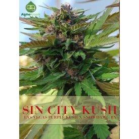 Alphakronik Alphakronik Sin City Kush Reg 5pack