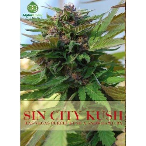 Sin City Kush Reg 5 pk