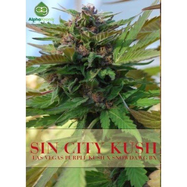 Alphakronik Sin City Kush Reg 5 pk