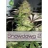 Alphakronik Snowdawg 2 Reg 5pack