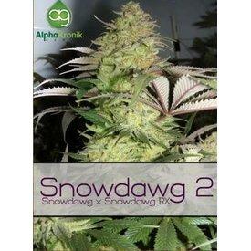 Alphakronik Snowdawg 2 Reg 5 pk