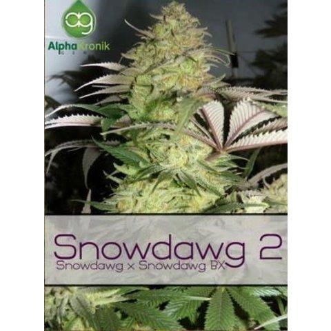 Snowdawg 2 Reg 5 pk