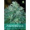 Snowdizzle Reg 10 pk