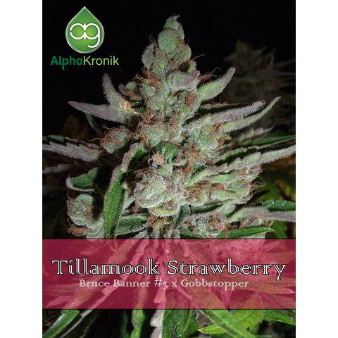 Alphakronik Tillamook Strawberry Reg 10 pk