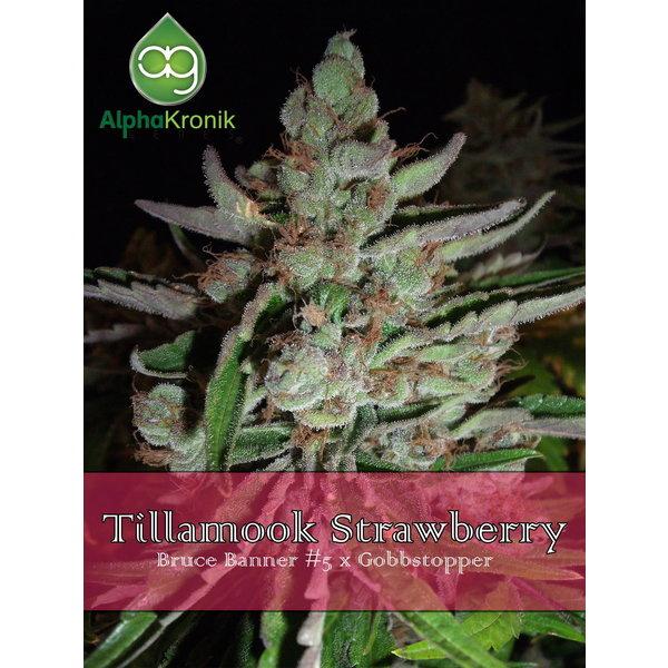 Alphakronik Alphakronik Tillamook Strawberry Reg 10 pk