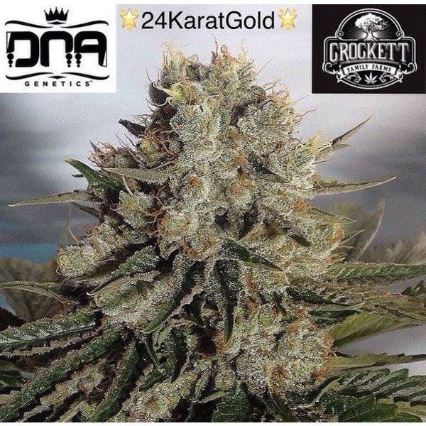 Crockett Family Farms Crockett Family Farms 24K Gold Reg 12 pk