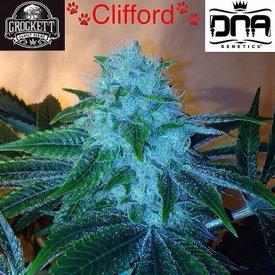 Crockett Family Farms Clifford Reg 12 pk
