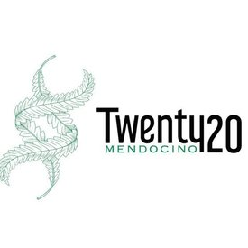 Twenty20 Mendocino Twenty20 Mendocino Gas Breath Reg 12 pk