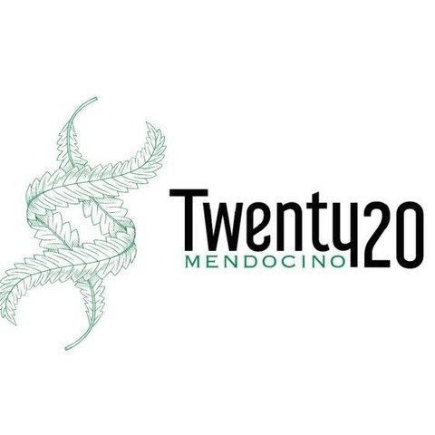 Twenty20 Mendocino Gas Breath Reg 12 pk