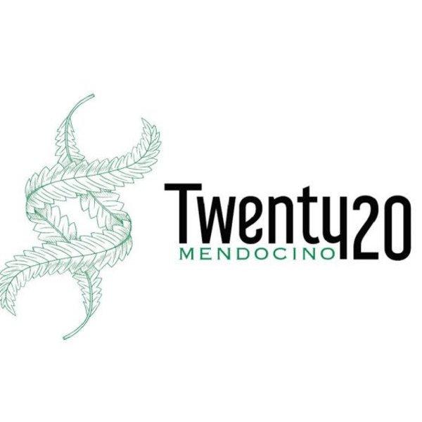 Twenty20 Mendocino Twenty20 Mendocino Gas Breath Reg 12 pk