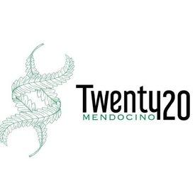 Twenty20 Mendocino Twenty20 Mendocino Nose Candy Reg 12 pk