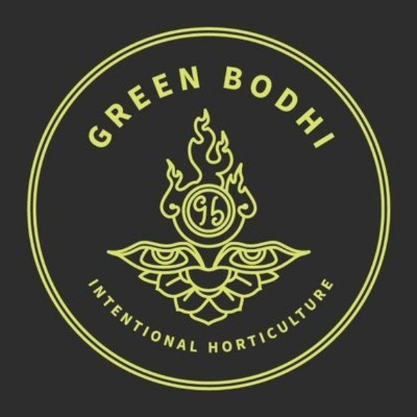 Green Bodhi SOG x Illusion OG Reg  21 pk