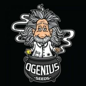 Ogenius Ogenius Lem Dog Reg 20 pk