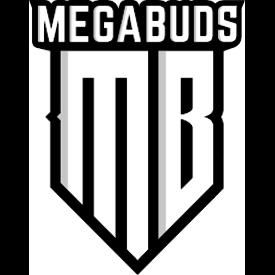 Mega Buds Mega Buds Big Bruce Fem 5 pk