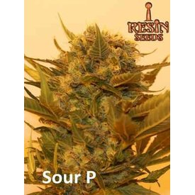 Resin Seeds Resin Seeds Sour P Fem 5 pk