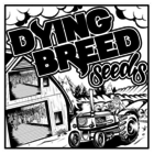 Dying Breed