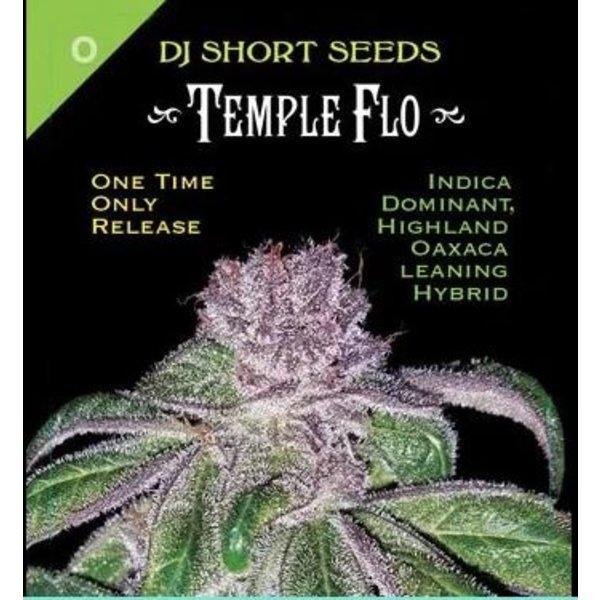 DJ Short Temple Flo Reg 13 pk