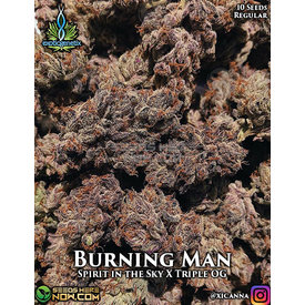 Exotic Genetix Burning Man Reg 10 pk
