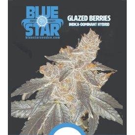 DJ Short Glazed Berries Reg 13 pk(+5 Freebies Inside)