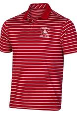 UA UA Performance Polo Striped Flawless