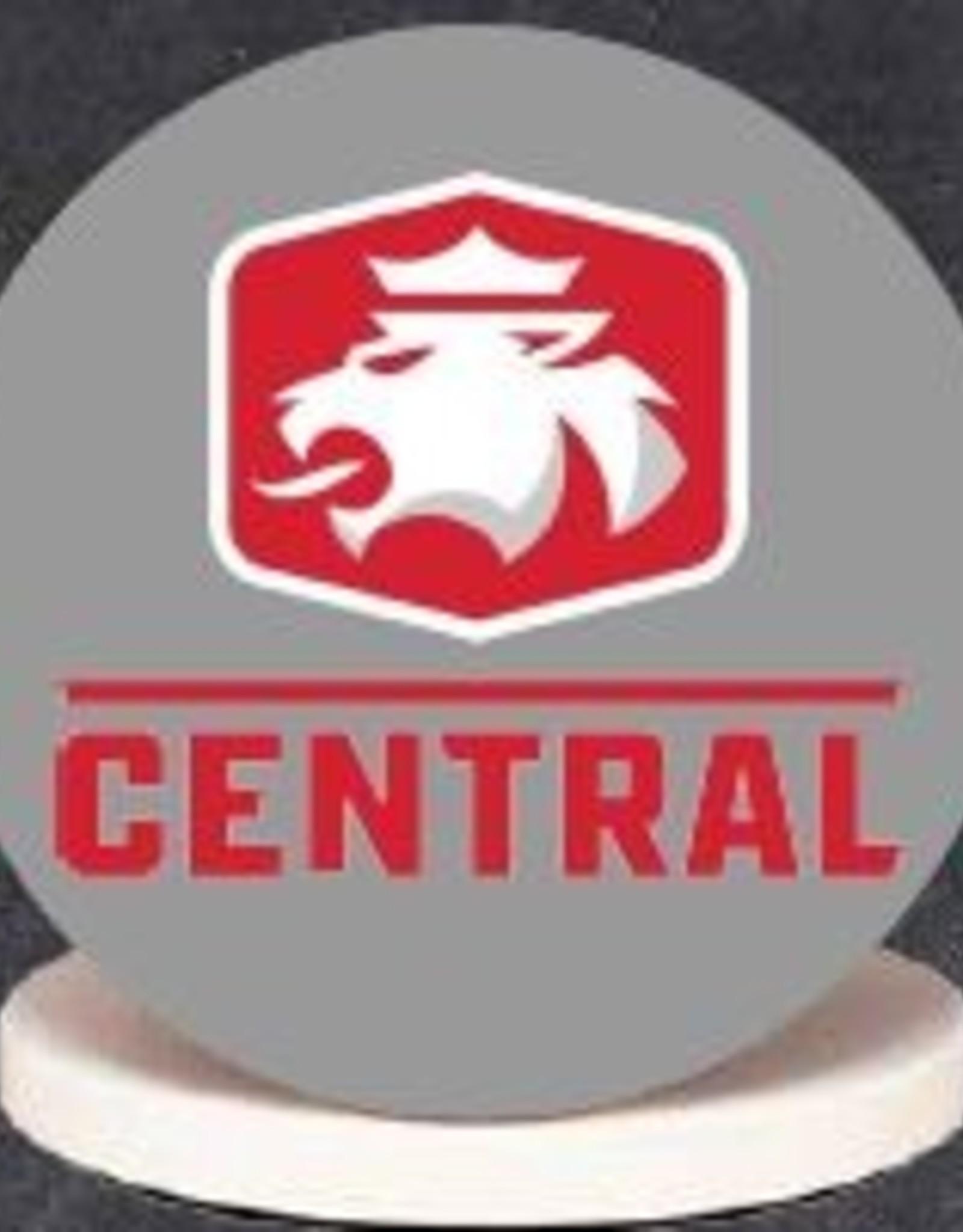 BLKST Blank Slate Stone Coaster Lion Logo