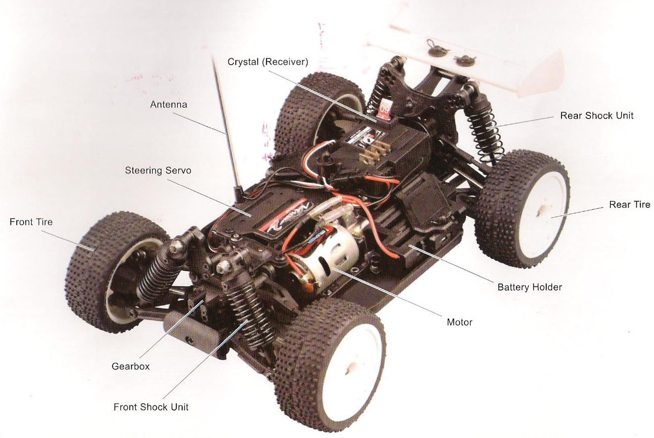 Car Part and Asc | Strictly RC Hobbies