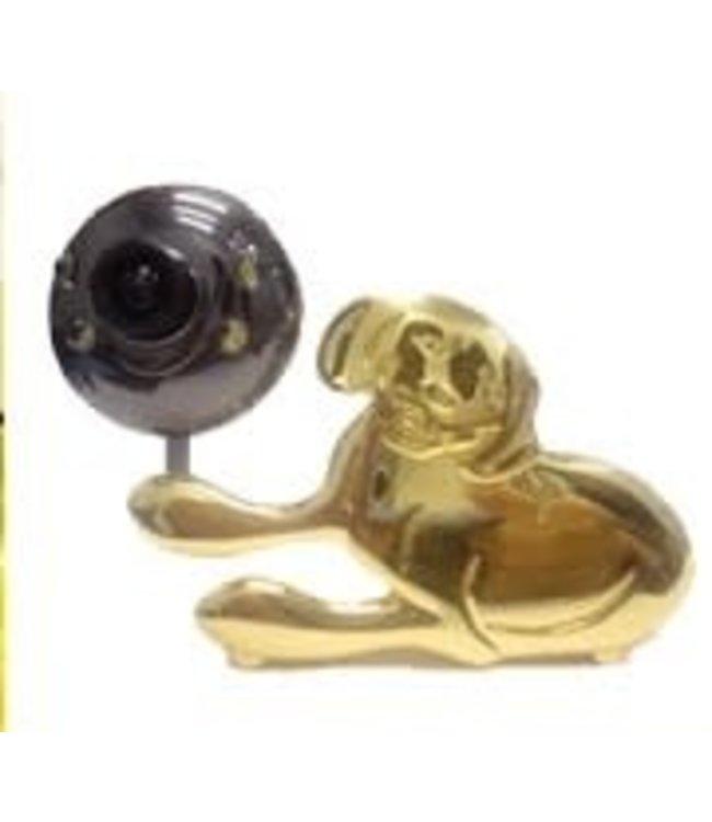 Caméra Web 1.0 mpx Gold Dog