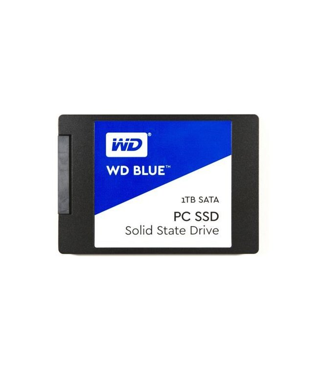 WESTERN DIGITAL WD Blue 1To SSD