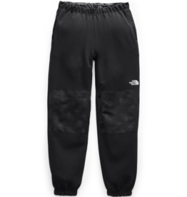 The North Face M GRAPHIC COLLECTION FLEECE PANT
