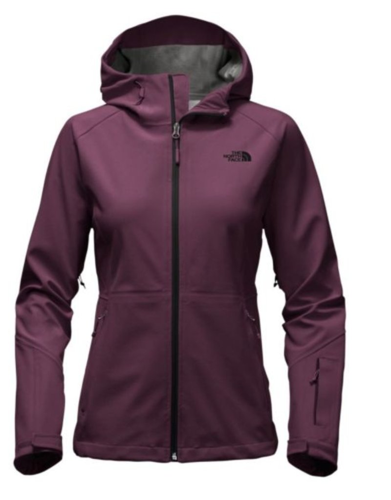 f068a69db690 The North Face W APEX FLEX GTX JACKET - Minipi Outfitters