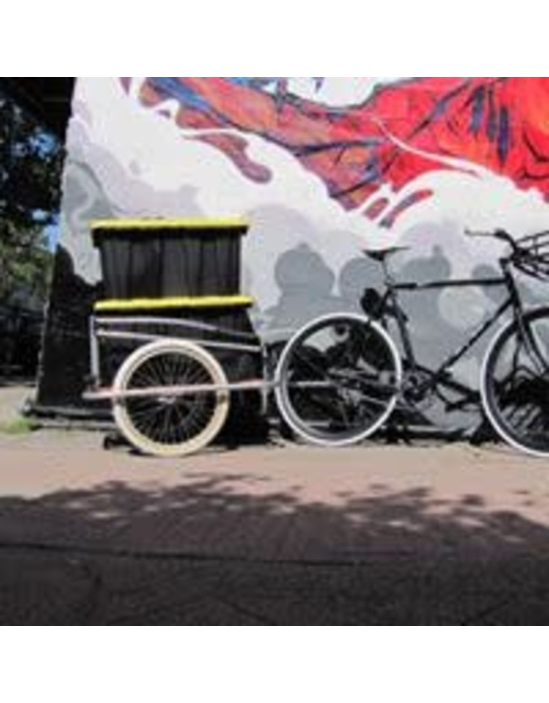 Custom Burley Cargo  Trailer