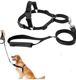 Easy Walk No Pull Dog Harness-Leash Set