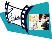 Ze Studios Pet Supplies Store