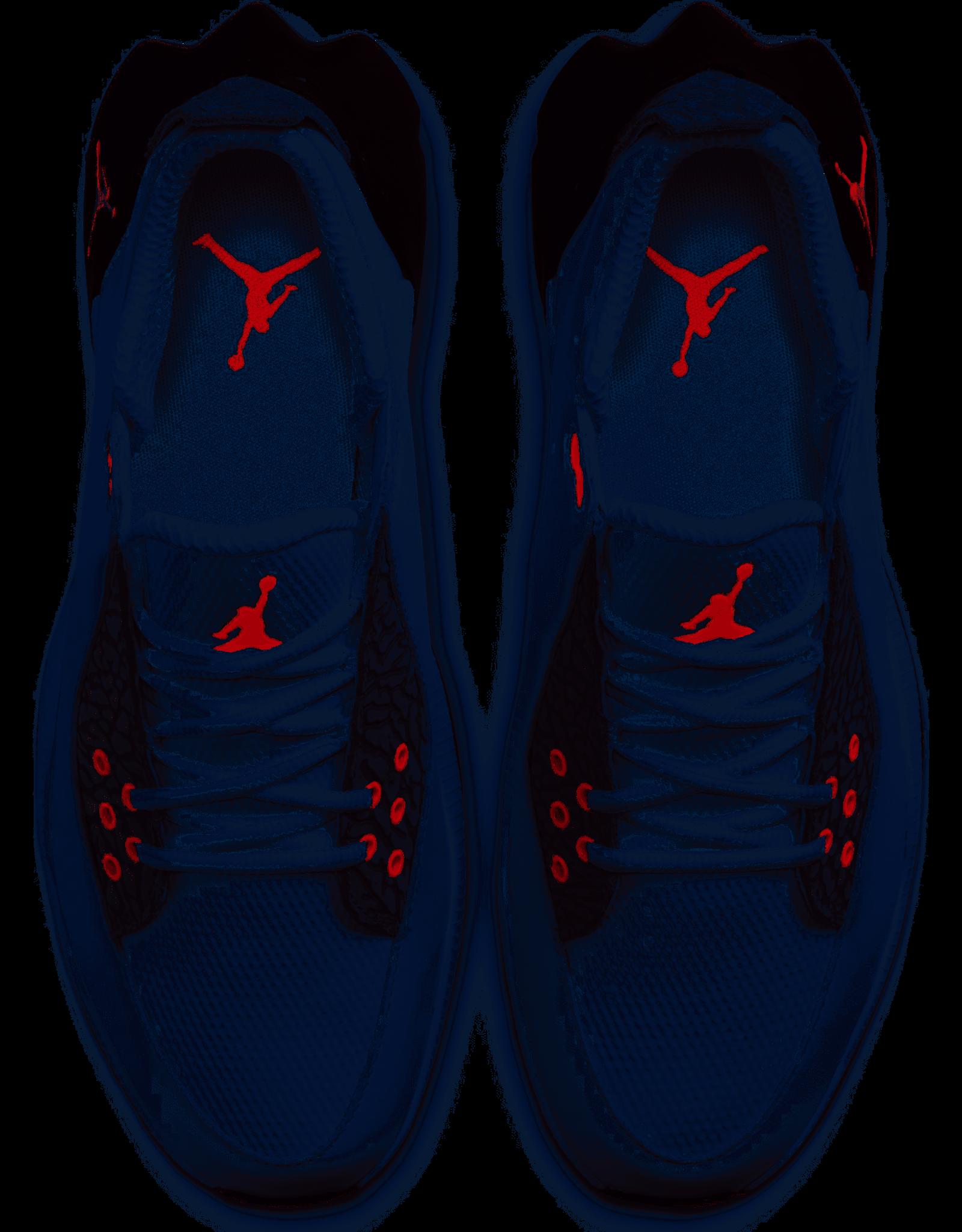 Nike Nike Jordan ADG2 Shoe