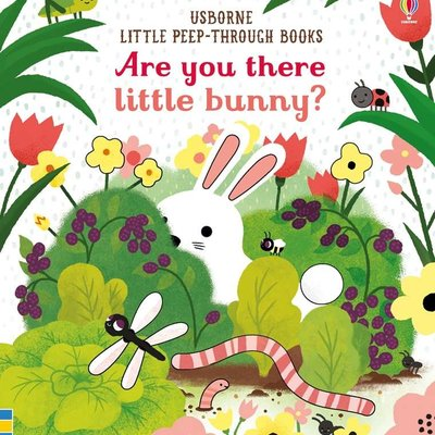 Usborne Books Are You There Little Bunny