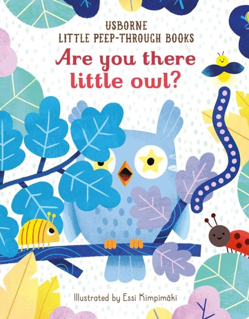 Usborne Books Are You There Little Owl