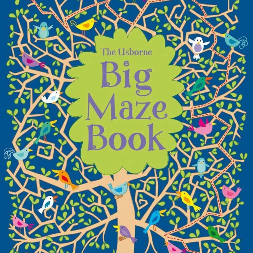 Usborne Books Big Maze Book