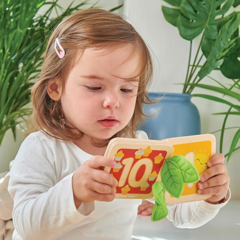 Le Toy Van Counting Book