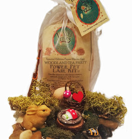 LadyJane Studios Power Pet Woodland Tea Party Kit, Paper Mache Egg