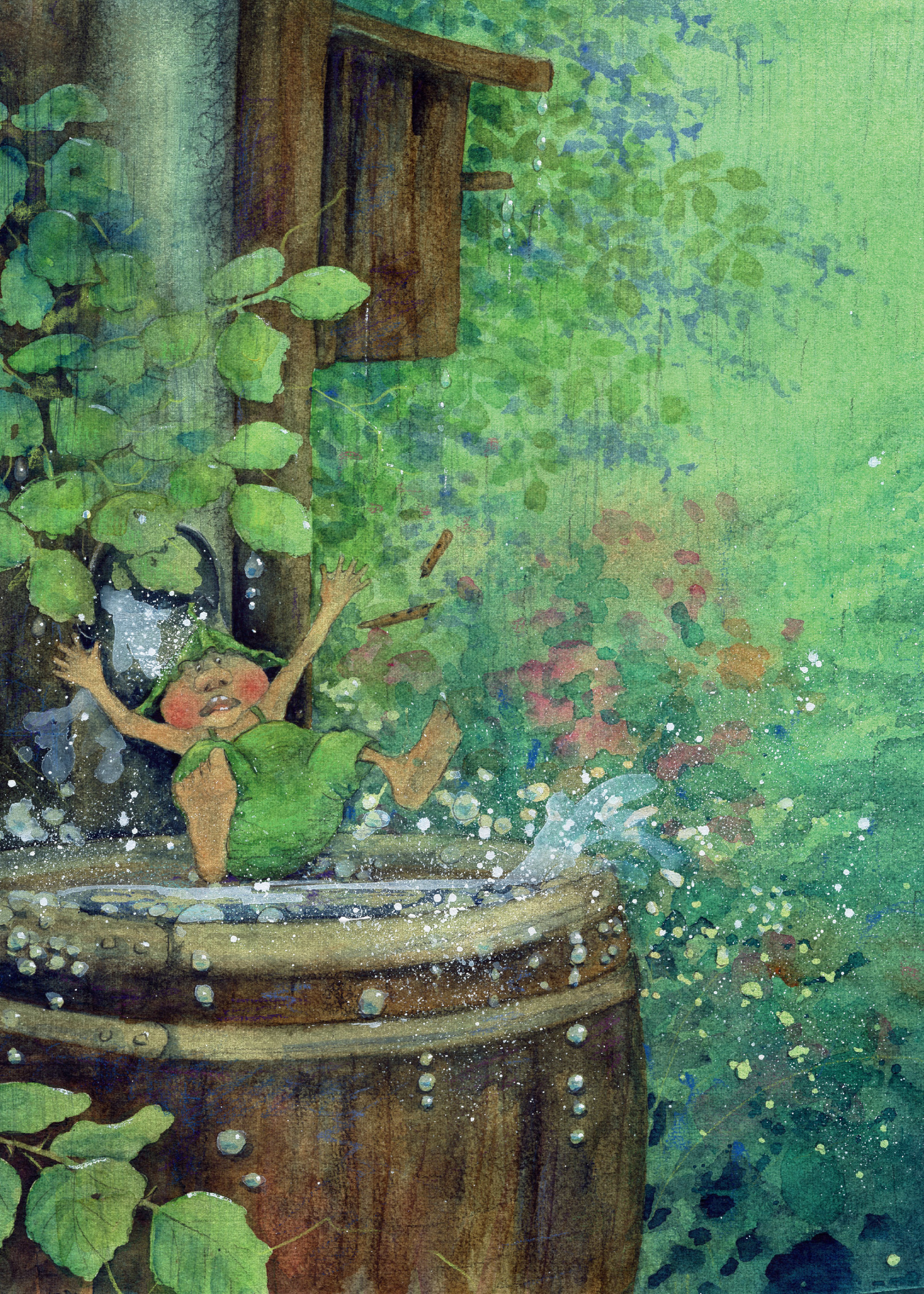 The Garden Adventures of Griswald the Gnome - Hardcover
