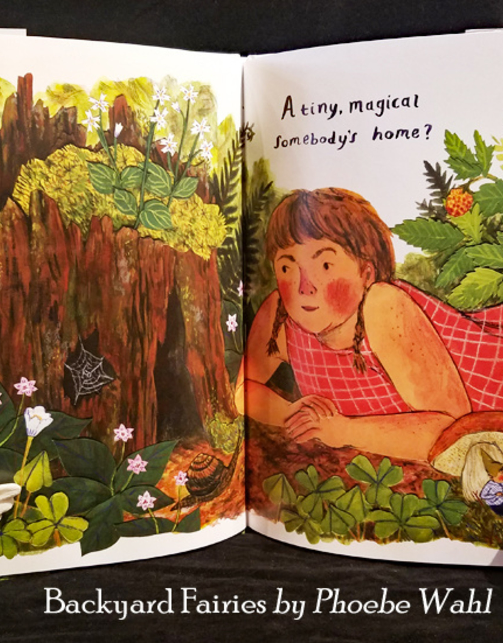 Backyard Fairies - Hardcover