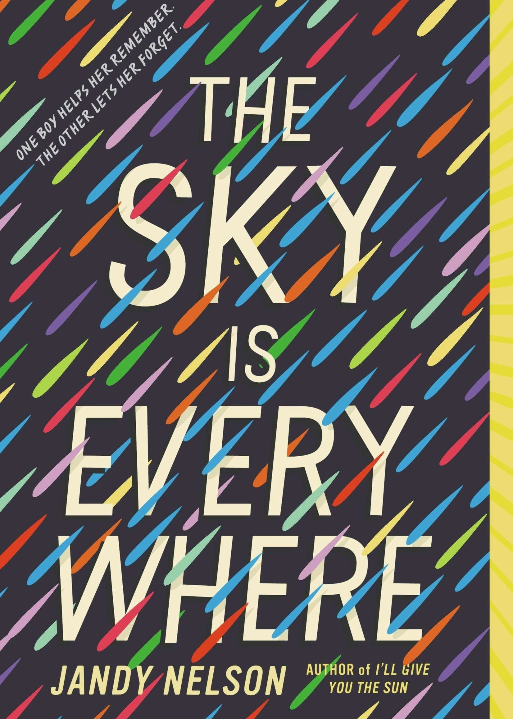 The Sky is Everywhere - Paperback
