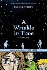 A Wrinkle in Time Graphic Novel - Paperback