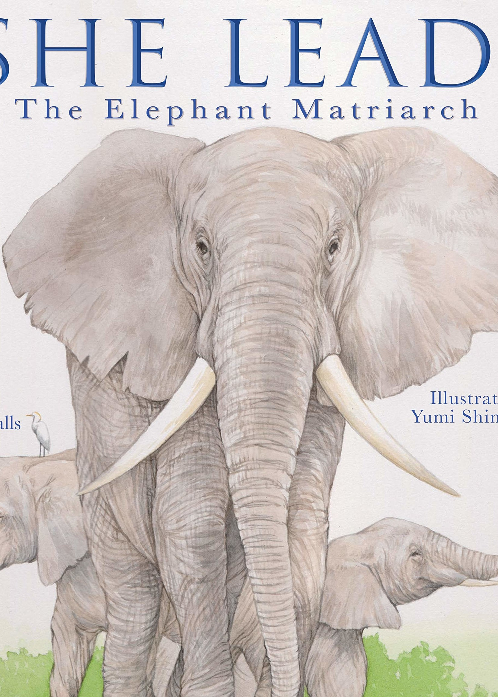 She Leads, The Elephant Matriarch - Hardcover